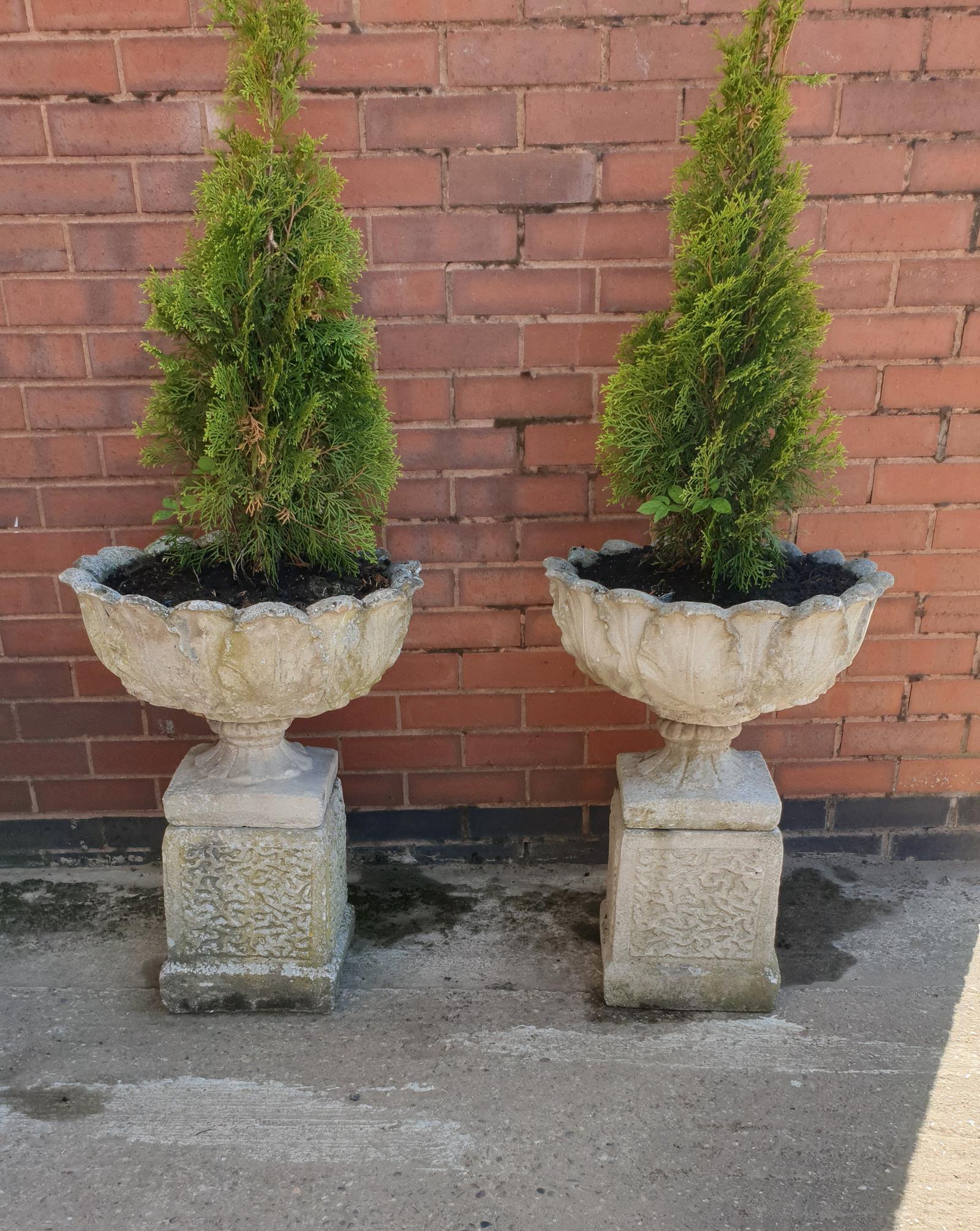 Pair of Garden Urns on Plinths (1 of 1)