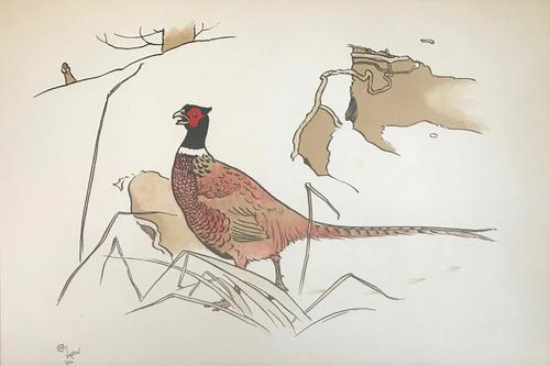 3 Original Chromolithographs by Cecil Aldin 1870-1935 of Pheasants & Foxes, Signed or Initialled 1900 (1 of 3)