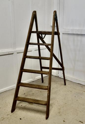 Tall 19th Century Wooden Step Ladder (1 of 7)