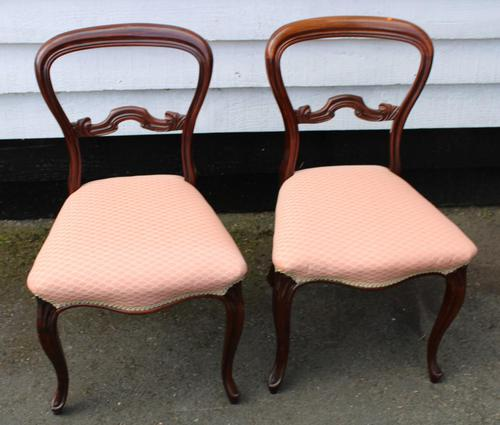 1900s Pair of Mahogany Cab Leg Chairs Pale Pink Upholstery (1 of 4)