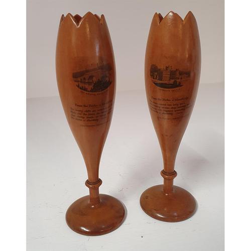 Superb Pair of Scottish Mauchline Vases (1 of 5)