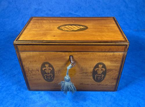 George III Satinwood Twin Tea Caddy with Prince of Wales Inlay (1 of 15)