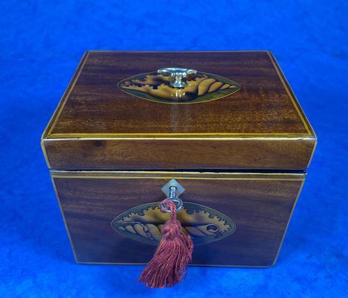 18th Century Mahogany  Shell Inlaid Tea Caddy (1 of 18)