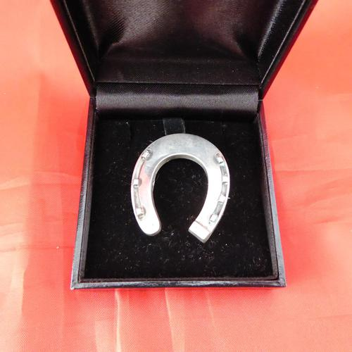 Silver Horseshoe Brooch (1 of 3)