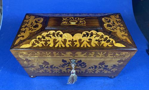William IV Rosewood Tea Caddy (1 of 13)