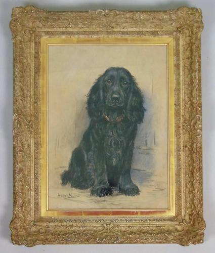Marion Harvey 1886-1971 Portrait of a Black Spaniel (1 of 9)