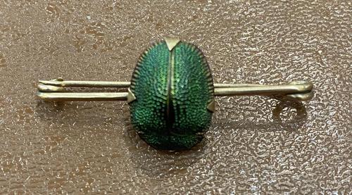 Scarab Beetle Yellow Metal Bar Brooch (1 of 3)