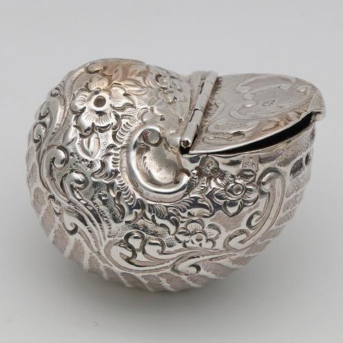 19th Century Silver Novelty Snuff Box (1 of 4)