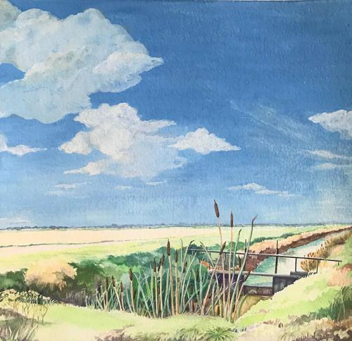 Original watercolour 'Bulrushes in a summer Norfolk landscape,' by Helen Hale. ROI. B.1936 Signed c.1970 (1 of 1)