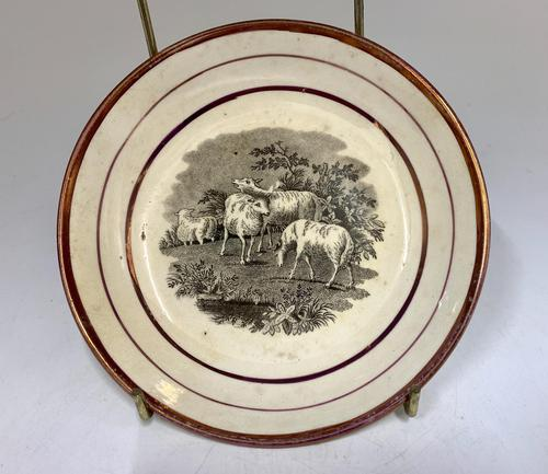 Antique Regency Period Porcelain Saucer c.1815 (1 of 3)