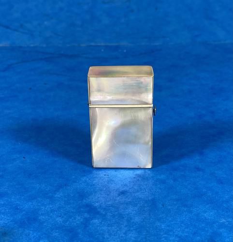 Victorian Mother of Pearl Vesta / Needle Case (1 of 12)
