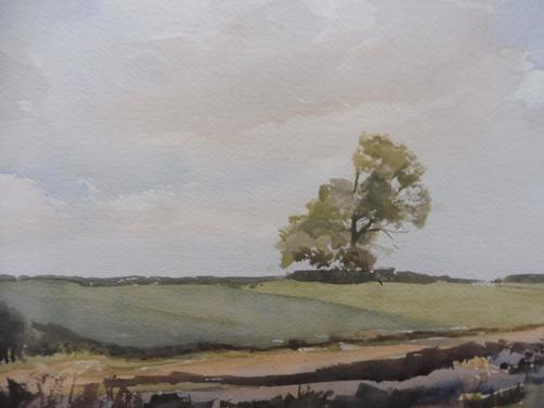 Watercolour Middlebere Heath Listed Artist Ronald Birch (1 of 10)