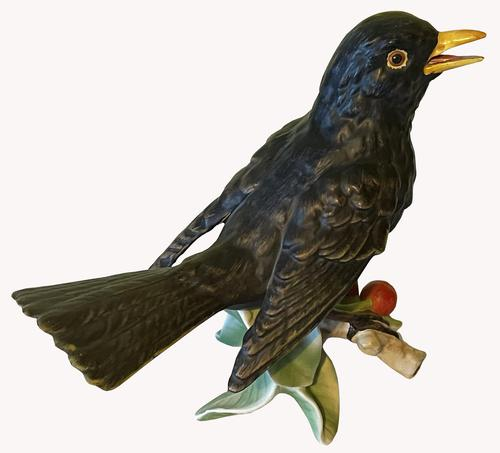 Porcelain Blackbird by Goebel of Germany (1 of 6)