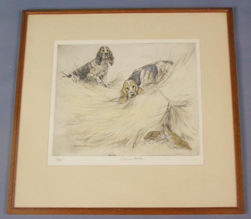 Hunting Dogs Field Spaniles G Vernon Stokes Signed Limited Edition Grouse (1 of 6)