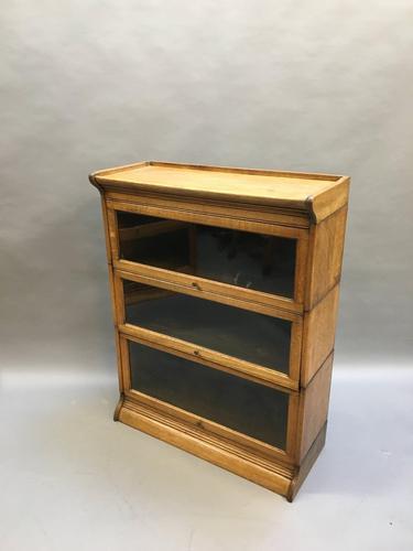 Globe Wernicke Type Bookcase (1 of 10)