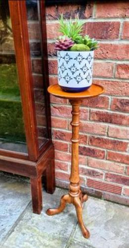 Victorian Birch Wood Plant Stand (1 of 6)