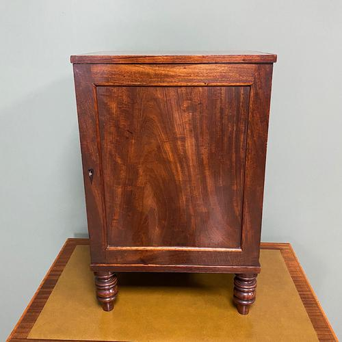 Spectacular Small Regency Antique Mahogany Collectors Cabinet (1 of 8)