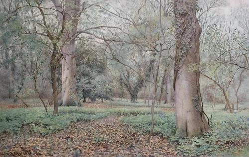 Wilmot Pilsbury Watercolour - Woodland Scene (1 of 3)