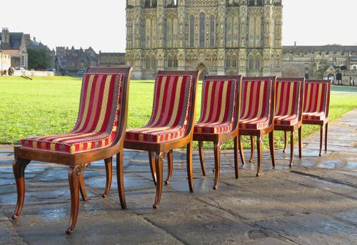 Antique French Regency Jeanselme Rosewood Dining Chairs (1 of 11)