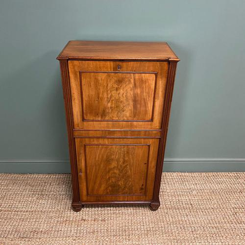 Regency Mahogany Antique Estate Cupboard with Fitted Interior (1 of 8)