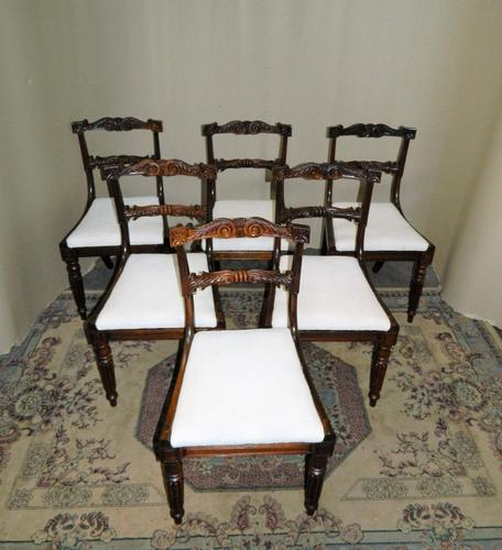 Set of 6 William IV Rosewood Dining Chairs (1 of 9)
