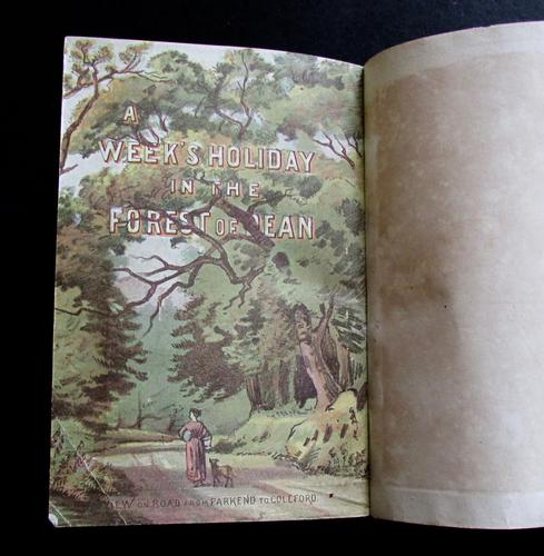 1880 A Week's Holiday in The Forest of Dean.  Rare 1st Edition, Coloured  Plates & Map (1 of 5)