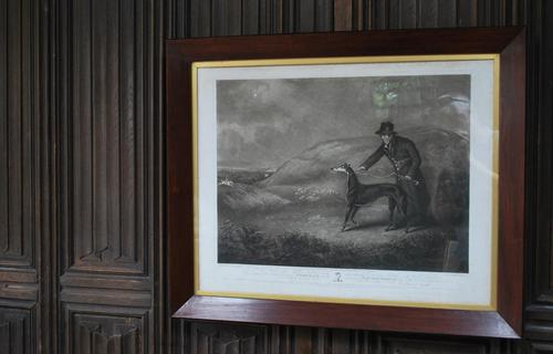 'Snowball the Greyhound' Framed Engraving (1 of 4)