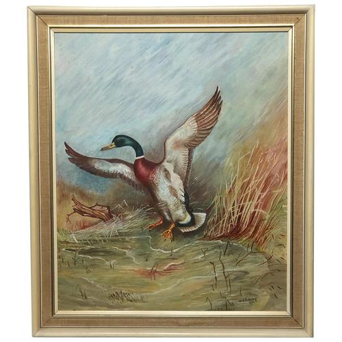 Fine 20th Century English Oil Painting Mallard Bird Duck Rising Up W.S Pickering (1 of 16)