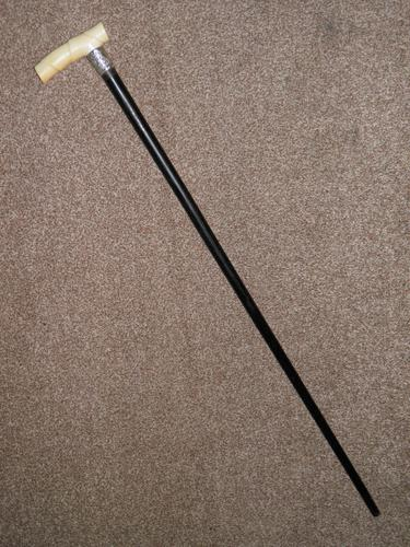 Antique Derby Handled Walking Stick With Hallmarked 1899 Silver Collar W.N (1 of 12)