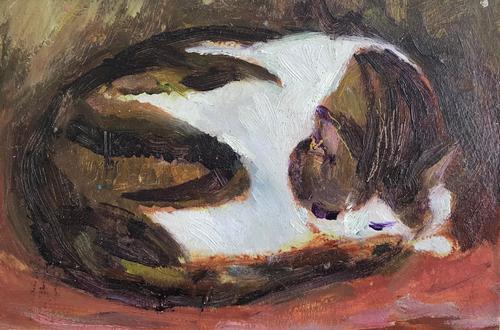 Original Oil on Board 'Sleeping Cat' by Anne Clarke (1 of 1)