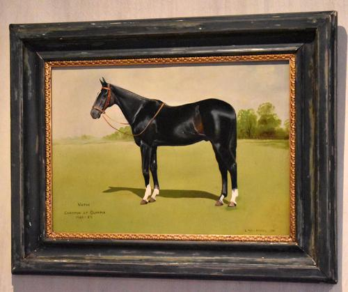 Horse oil painting 'Victor' by L Mallender (1 of 8)