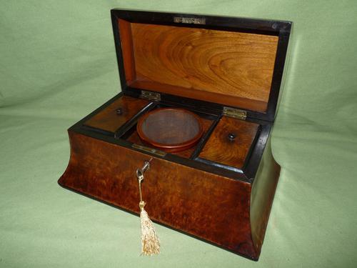 Large Burr Walnut Bell Style Tea Caddy - Original Lids c.1870 (1 of 11)