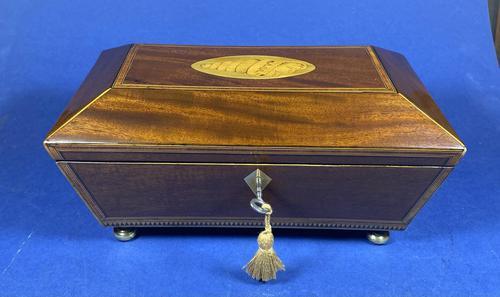 Regency Sarcophagus Mahogany Box with Shell Inlay. (1 of 12)