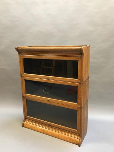 Globe Wernicke Type Bookcase (1 of 13)