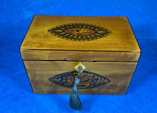 Late 18th Century Fruitwood and Applewood Twin Tea Caddy (1 of 21)