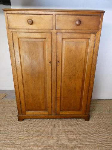 19th Century Shelved Pine Cupboard (1 of 8)