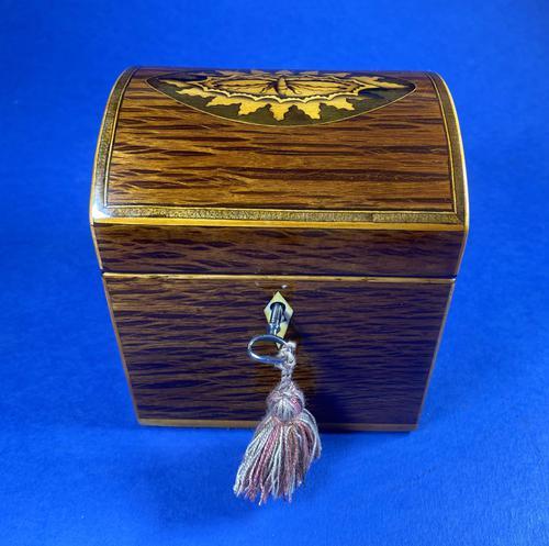 George III Partridge Wood Tea Caddy (1 of 12)