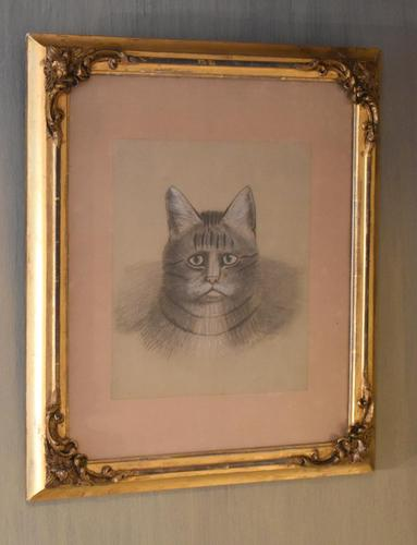 Superb Victorian 'grumpy Cat' Pastel Drawing (1 of 10)