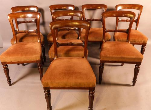 Set of 8 William IV Dining Chairs  Mahogany (1 of 12)