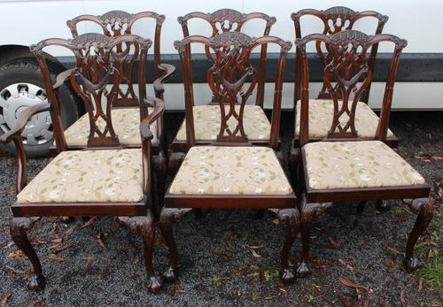 1900's Quality Mahogany Set of 6 Georgian style Dining Chairs with Pop out Seats (1 of 4)