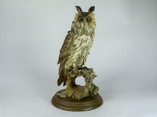 Rare Porcelain Long Eared Owl on Log (1 of 6)