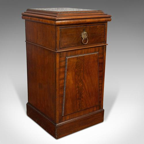 Tall Antique Side Cabinet, English, Mahogany, Bedside, Nightstand, Regency, 1820 (1 of 12)