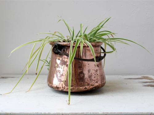 19th Century Copper Cauldron or Planter (1 of 8)