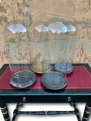 Set off Four 19th Century Glass Domes (1 of 2)