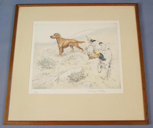 Gun Dogs Hunting G Vernon Stokes Signed Limited Edition Spaniel (1 of 7)