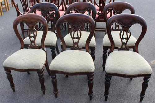1960's Set 6 Mahogany Balloon Back Dining Chairs in pale Upholstery (1 of 3)