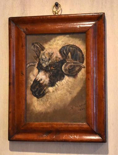 Sheep Portrait Oil Painting by H.Windred (1 of 7)