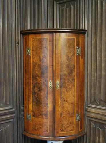 Antique Burr Walnut Corner Cupboard (1 of 9)