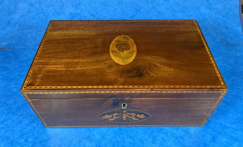 George III Solid Mahogany Box With Wonderful Inlaid Panels (1 of 18)