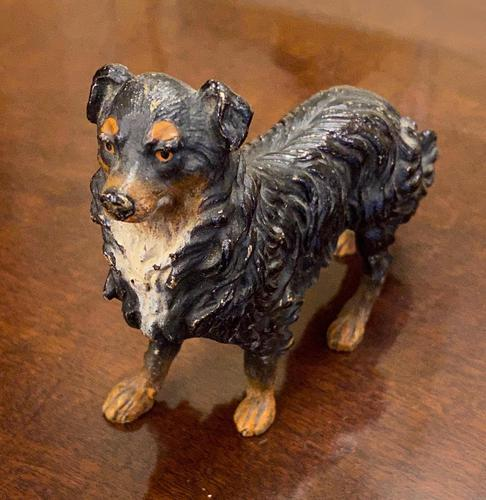 Austrian Cold Painted Bronze Dog. Late 19th Century. (1 of 5)